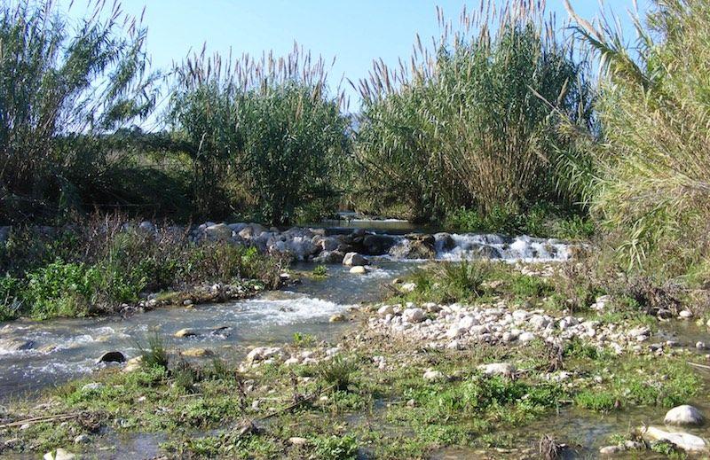 Rio Algar